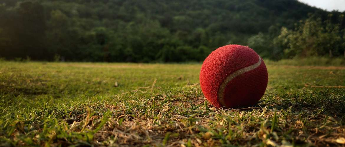 Cricket World Cup 2019 Insights