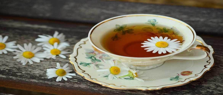 Tea: A Flavorful Way of Fluid